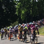 Cycling Criterium